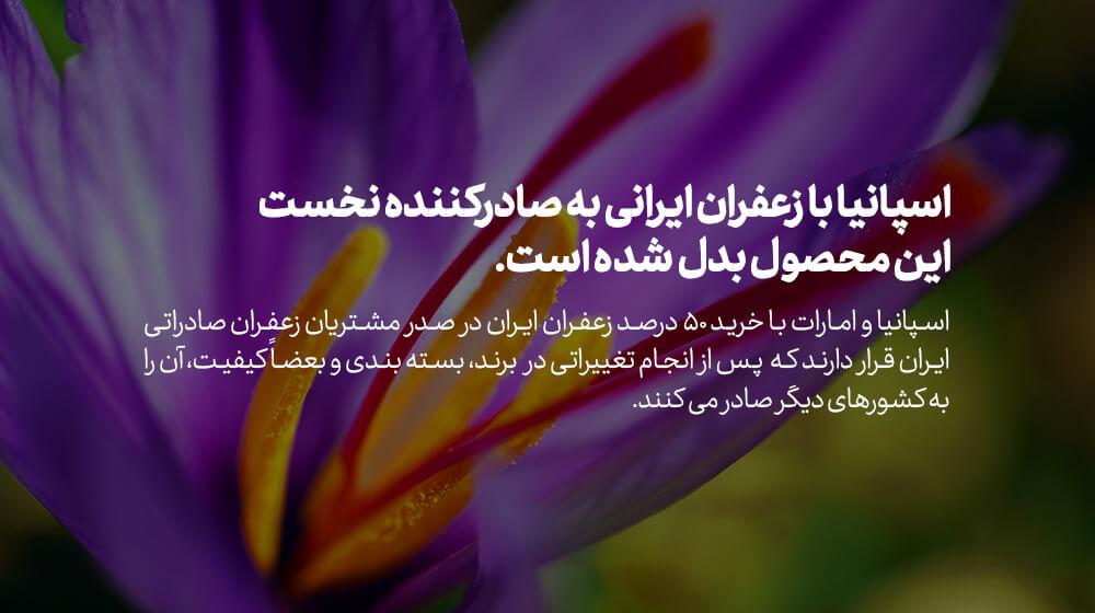 اسپانیا بزرگترین صادر کننده زعفران ایران